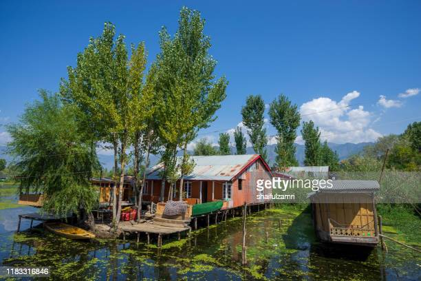 view of houseboat at dal lake in kashmir, india. - shaifulzamri - fotografias e filmes do acervo