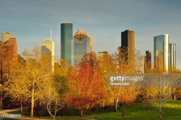 a view of houston's skyline at sunset from buffalo bayou park - houston texas photos et images de collection