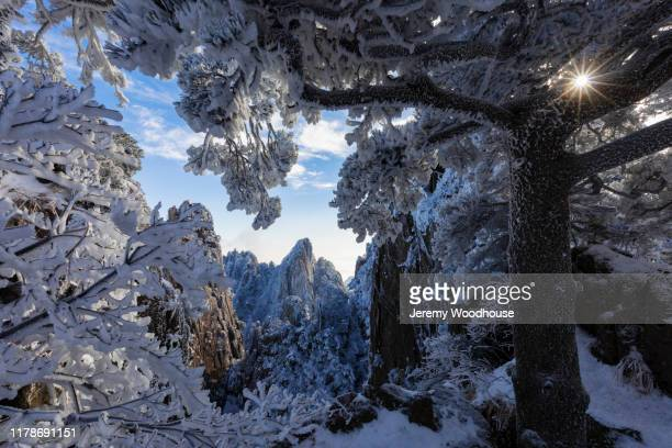 view of huangshan mountans at the beginning to believe lookout - jeremy woodhouse stock pictures, royalty-free photos & images