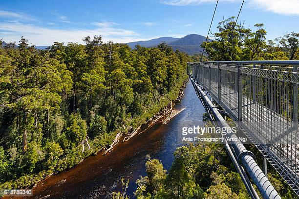 View of Huon River and the Cantilever Bridge on the Tahune Forest AirWalk, Huon Valley, Southern Tasmania, Australia