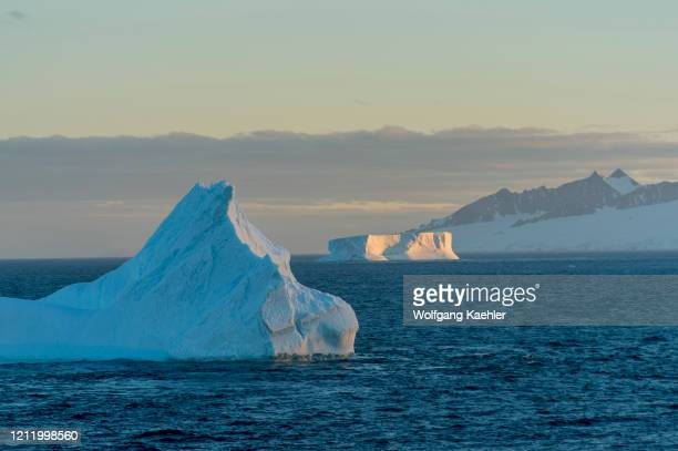 View of icebergs in evening light drifting in the Antarctic Sound near Hope Bay on the tip of the Antarctic Peninsula.