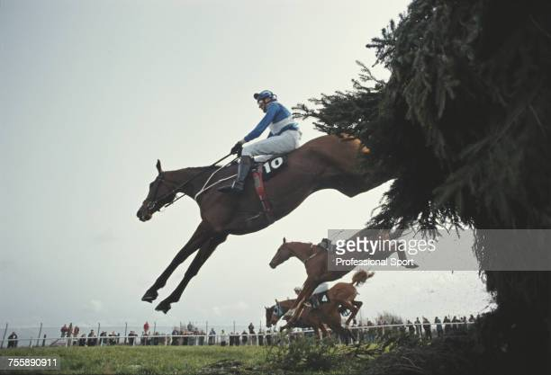 View of Interim Lib ridden by J Bradburne clearing Becher's Brook fence after a false start during the 1993 Martell Grand National steeplechase horse...
