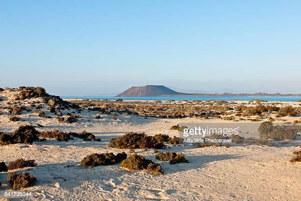 view of Isla de Lobos from the beach