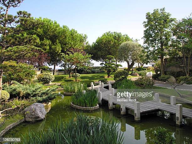 view of japanese garden - japanese garden stock photos and pictures