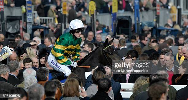 View of jockey Tony McCoy and Nelson's Bridge being led out prior to racing on Ladies Day during the Cheltenham National Hunt Festival at Cheltenham...