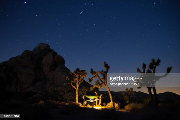 View of Joshua Tree National Park at night