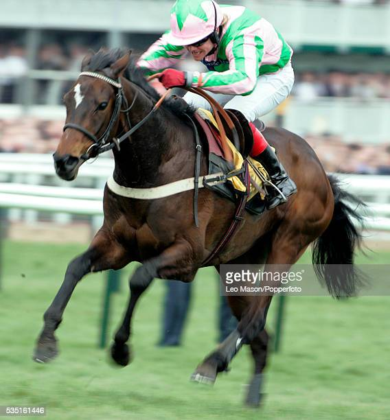 View of Katchit and jockey Robert Thornton on their way to winning The JCB Triumph Hurdle race during the 2007 Cheltenham Festival Meeting in...