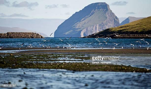 View of Koltur island from the port basin of Midvagur on September 7, 2013 in Midvagur, Faroe Islands.