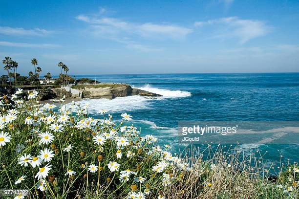 view of la jolla cove - la jolla stock pictures, royalty-free photos & images