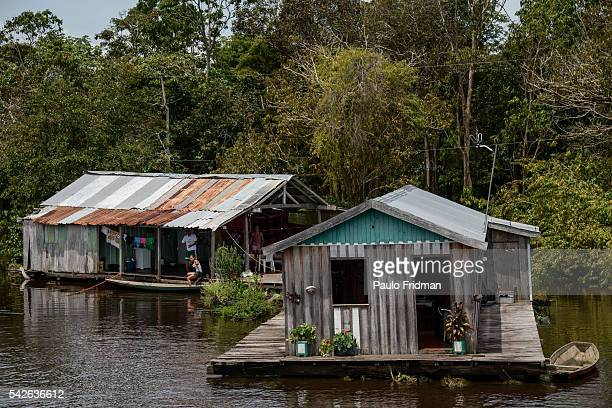 View of Lago do Janauari, where people live in floating houses that vary in high according to the lake's flood. Manaus. Amazonia, Brazil. April 8th...