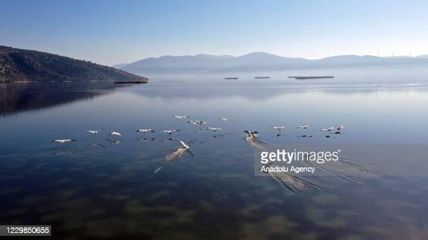 View of Lake Bafa, which is the biggest coastal wetland in Aegean Region of Turkey, in Aydin, Turkey on November 29, 2020. Lake Bafa hosts more than...