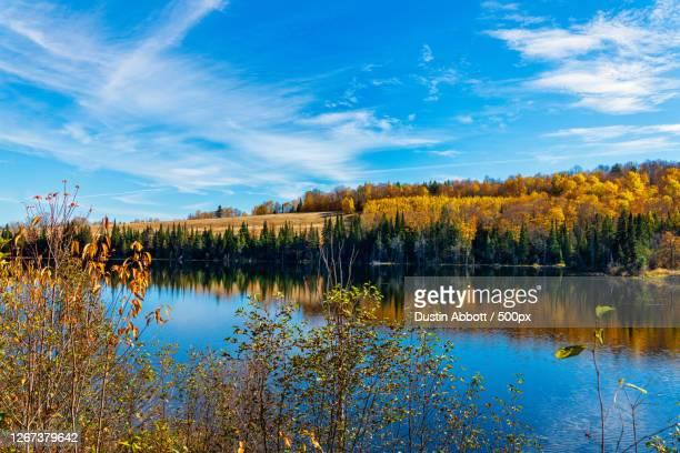view of lake in autumn, peterborough, ontario, canada - dustin abbott - fotografias e filmes do acervo