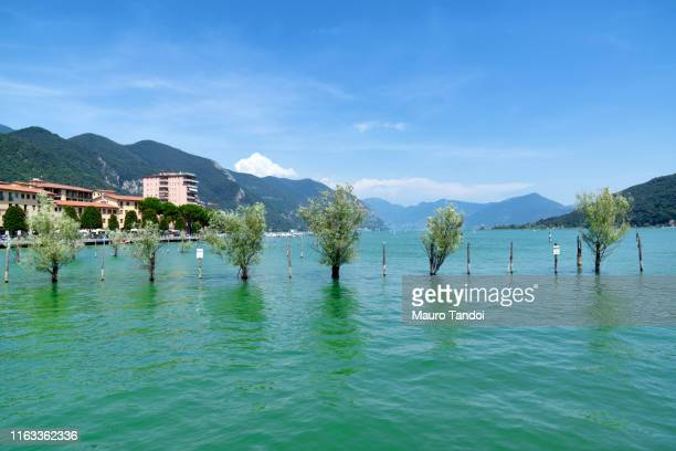 view of lake iseo from paratico, italy - mauro tandoi stock pictures, royalty-free photos & images