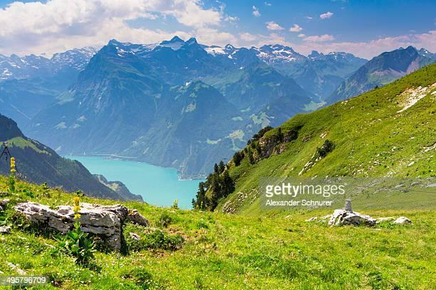 View of Lake Lucerne seen from Fronalpstock mountain, Stoos, Morschach, canton of Schwyz, Switzerland