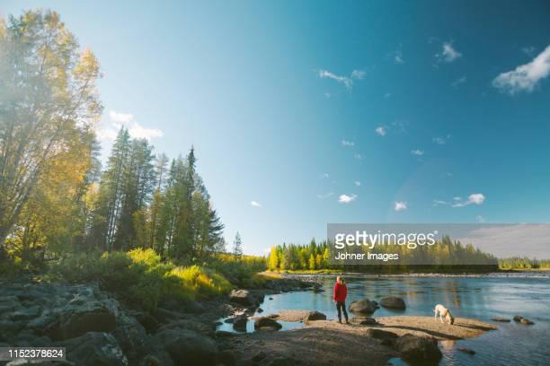 view of lake - suécia - fotografias e filmes do acervo