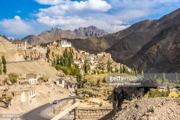 View of Lamayuru Monastery, Leh Ladakh, India.