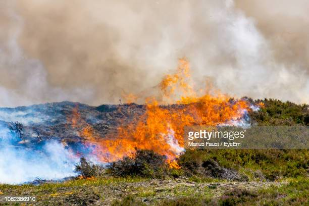 view of land set on fire - wildfire stock photos and pictures