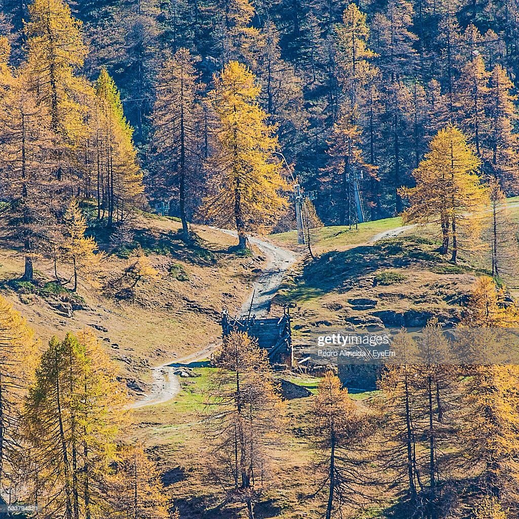 View Of Landscape With Forest In Autumn : Foto stock