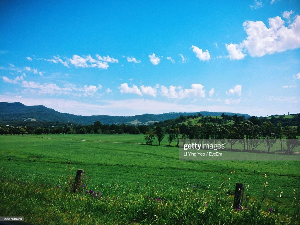View Of Landscape With Trees And Hills : Foto stock
