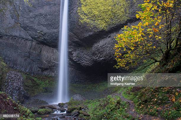 View of Latourell Falls and basalt rock formations near Portland along the Columbia River Gorge in Oregon USA within Guy W Talbot State Park