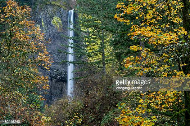View of Latourell Falls in the fall a waterfall near Portland along the Columbia River Gorge in Oregon USA within Guy W Talbot State Park