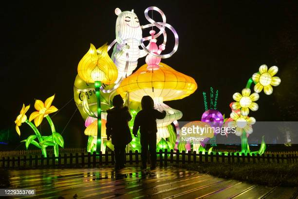 View of light installations inside the open-air exhibition 'Alice in Wonderland - Garden of Lights' at the Museum of Municipal Engineering and CD...