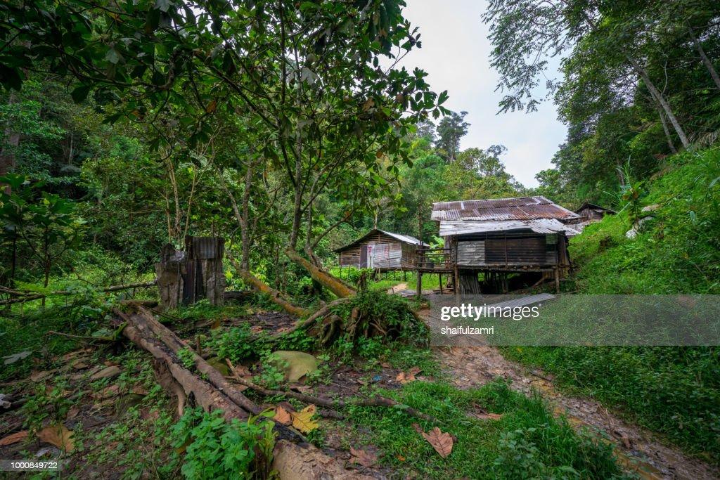 View of local Penan settlement at Bario, Sarawak of Malaysia. : Stock Photo