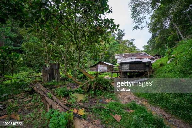 view of local penan settlement at bario, sarawak of malaysia. - shaifulzamri - fotografias e filmes do acervo
