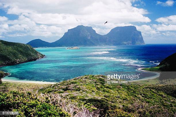 View of Lord Howe Island from bird colony
