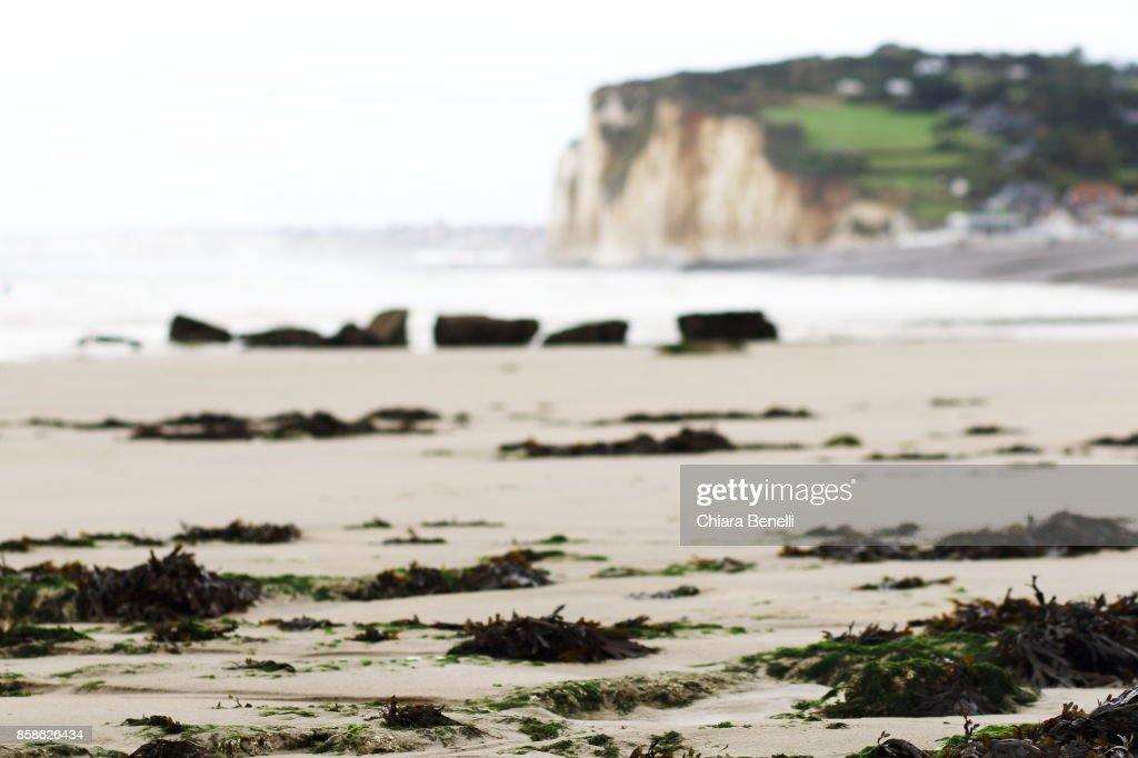 view of low-tide alabaster cliffs : Stock-Foto