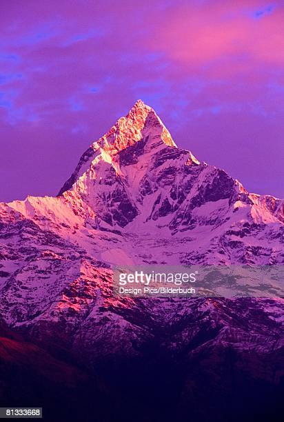 view of machhapuchhare at sunrise from sarangkot, annapurna region, nepal - machapuchare stock photos and pictures