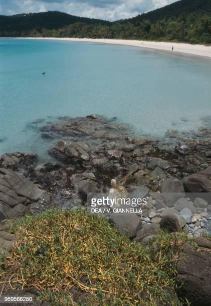 View of Magens Bay Saint Thomas Island US Virgin Islands United States of America