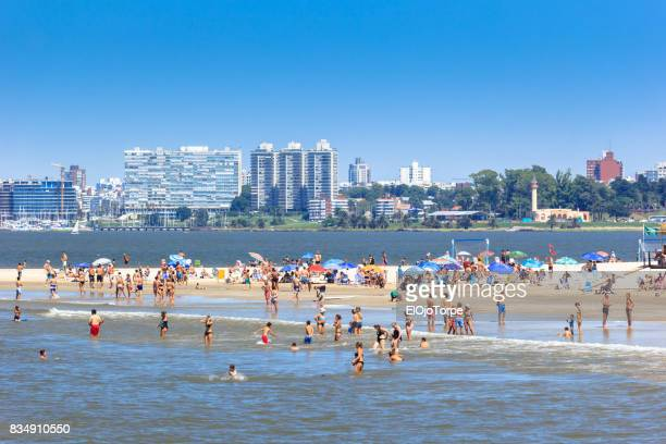 view of malvin beach in summer, montevideo, uruguay - montevideo stock pictures, royalty-free photos & images