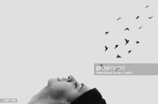 View Of Man Day Dreaming With Flock Of Birds In Sky