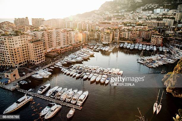 view of marina with yachts and boats, monte carlo, monaco - monte carlo stock-fotos und bilder