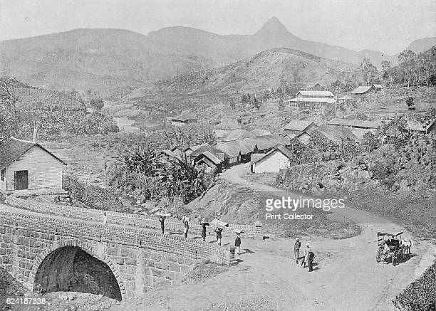 View of Maskeliya showing Adam's Peak' c1890 From The Hundred Best Views of Ceylon [Plâté Ltd Colombo Kandy Nuwara Eliya 1910] Artist Alfred William...