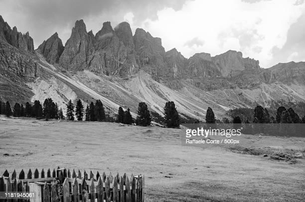 view of meadow in mountains - raffaele corte foto e immagini stock