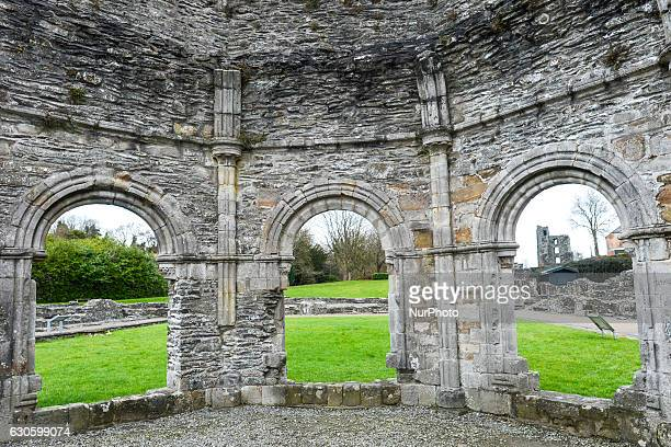 A view of Mellifont Abbey site in County Louth the first Cistercian abbey to be built in Ireland On Monday 26 December 2016 in Mellifont County Louth...