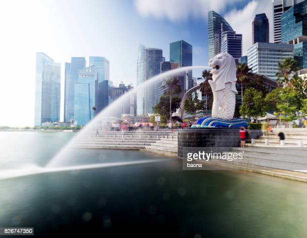 view of merlion fountain in singapore - merlion park stock photos and pictures