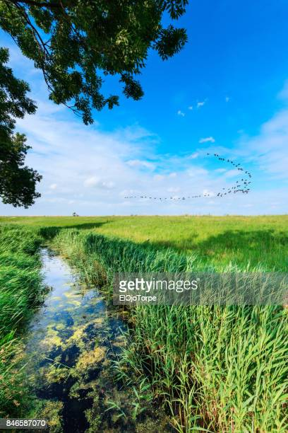 View of Minnebuurt, Netherlands