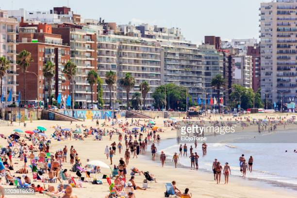 view of montevideo's skyline and pocitos beach in summer, montevideo, uruguay - uruguay stock pictures, royalty-free photos & images