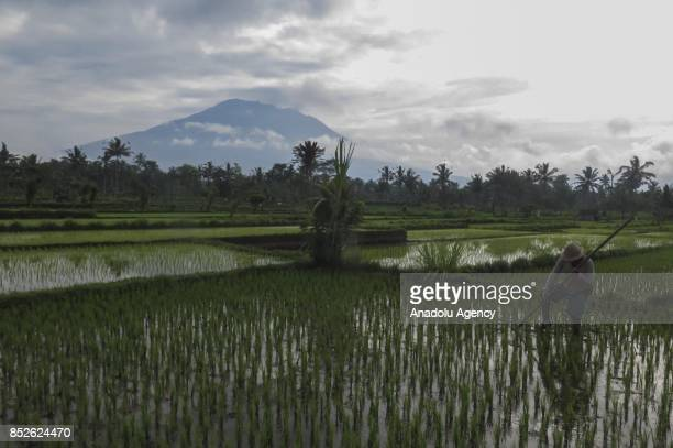 A view of Mount Agung from Karangasem Regency in Bali Indonesia on September 24 2017 Thousands of villagers evacuated to the temporary shelters from...