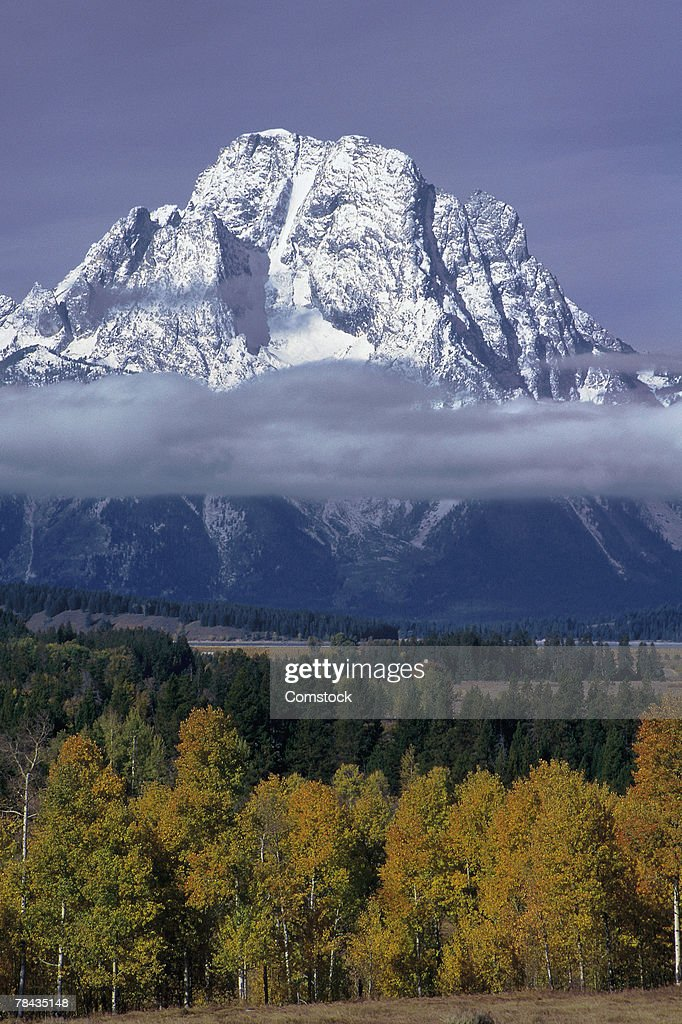 View of Mount Moran : Foto de stock