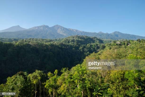 view of mount rinjani in early morning from desa sembalun, lombok, indonesia - shaifulzamri 個照片及圖片檔
