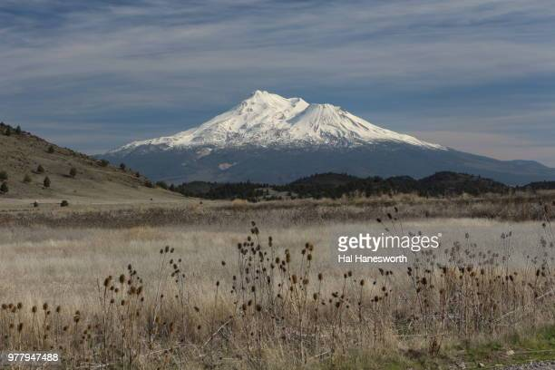 view of mount shasta in background, california, usa - mt shasta stock pictures, royalty-free photos & images