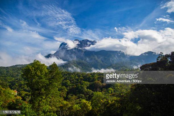 view of mountains and clouds, borneo, indonesia - isla de borneo fotografías e imágenes de stock