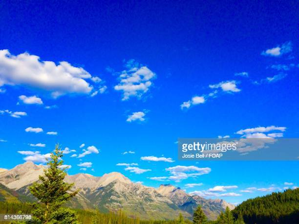 view of mountains and trees - josie photos et images de collection