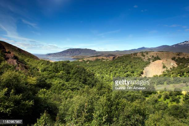 view of mountains and valley in thorsmork, iceland - gunnar örn árnason stock pictures, royalty-free photos & images
