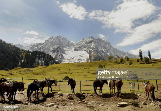 A view of mountains covered with fresh snowfall in the area of Sonamarg on October 9 2018 in Srinagar India