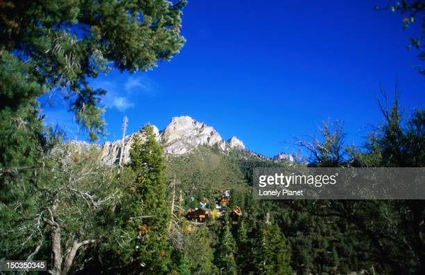 view of mt charleston. - mt charleston stock photos and pictures
